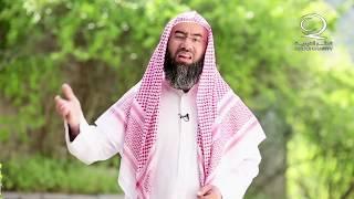 كيف للإنسان أن يمشي على وجهه كما ذكر في القرآن ؟