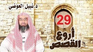 قصة مريم الطاهرة .. من أروع القصص 29 نبيل العوضي