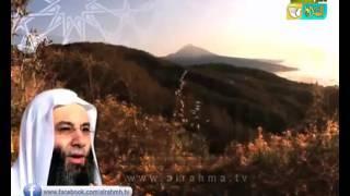 شاهد ليلة القدر ودعاء ليلة القدر من فضيلة الشيخ الدكتور محمد حسان رمضان 1438 هـ