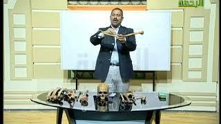 البرامج التعليمية مادة الأحياء الدكتور /  محمد فرج  5 1 2018